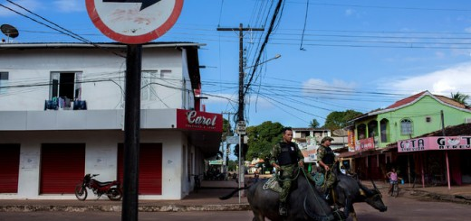 Brazilian Police Officers riding buffalo